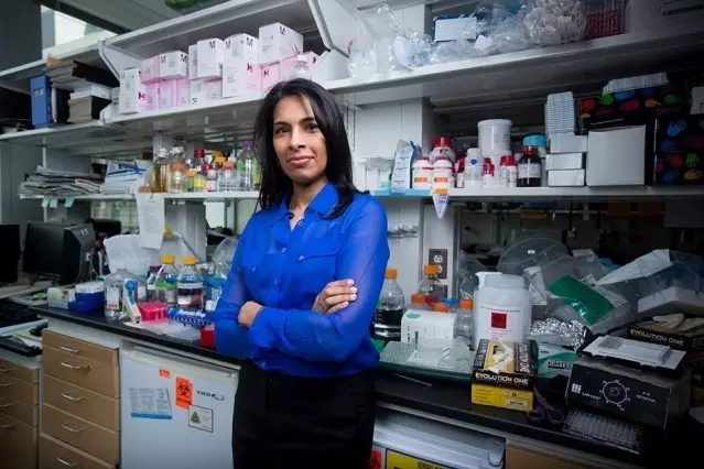 《自然》:纳米技术或将卵巢癌筛查提前5个月
