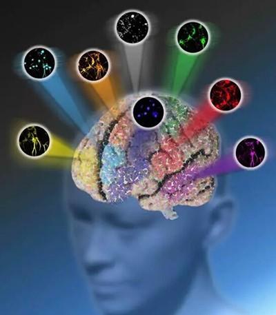 """""""闪耀""""Nature 拉曼显微术突破传统光学成像颜色极限"""