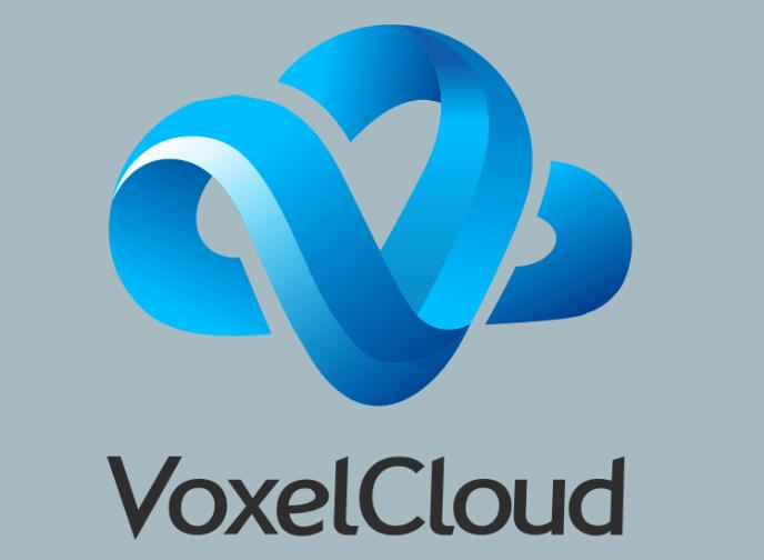 VoxelCloud着力构建医疗影像人工智能图谱:获千万美元投资