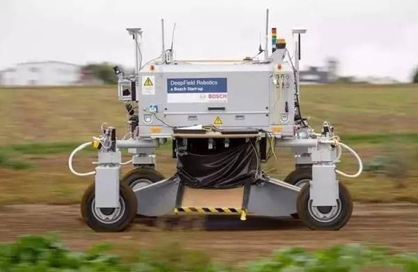 除草机器人将杂草一 锤 致死