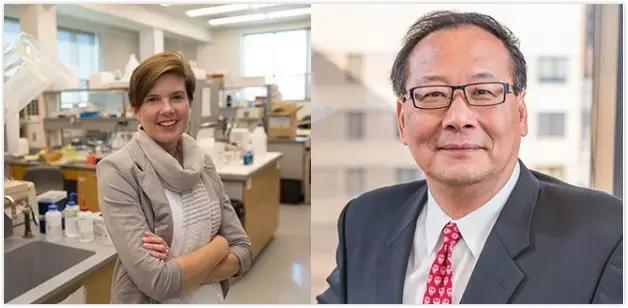华人科学家发明出3D打印干细胞心脏补丁