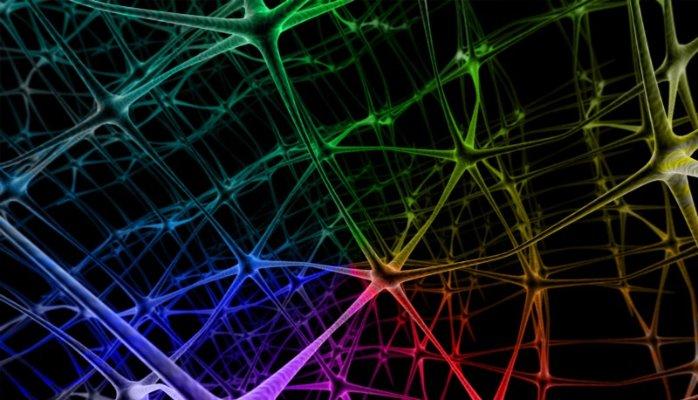 澳洲科学家在芯片上培育脑细胞:未来可治疗神经疾病