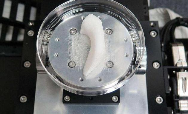 3D打印器官已成现实为何医院都不敢给病人用?