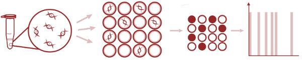 数字PCR分析进入医疗器械审批 可与高通量测序优势互补