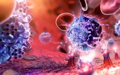 中国迈入免疫细胞治疗战场 国内分析仪器企业将受益