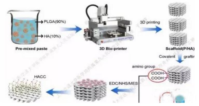 3D打印多孔支架用于高感染风险骨缺损的修复