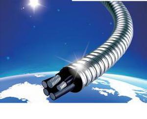赵梓森:我国海缆技术已达世界领先级别