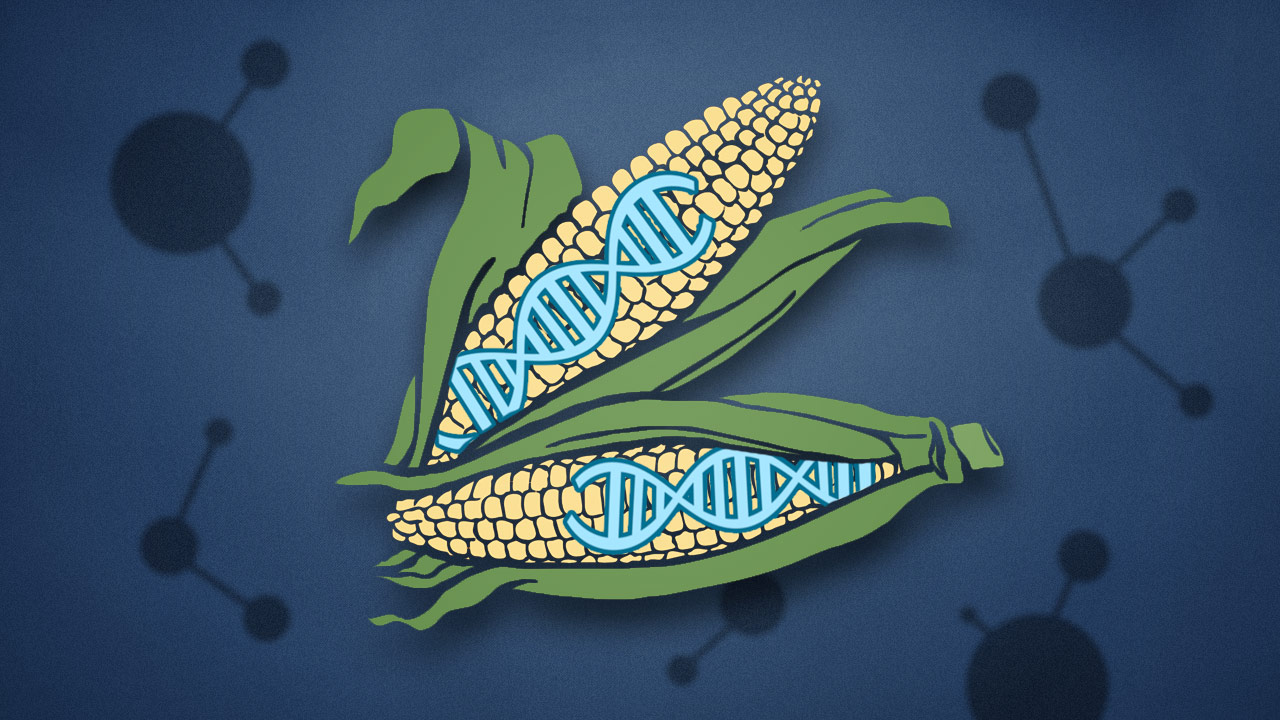 未来人类可以用CRISPR技术来做哪些事?