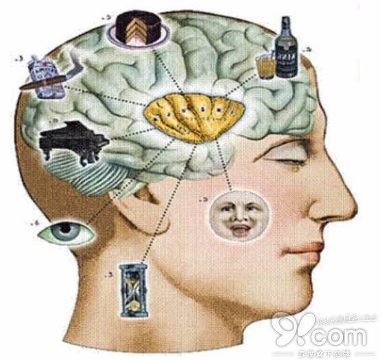 """谷歌DeepMind发布最新研究:人类认知心理学开启人工智能的""""黑盒子"""""""