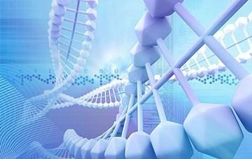 医疗行业飞速发展 生物反应器市场有待深挖