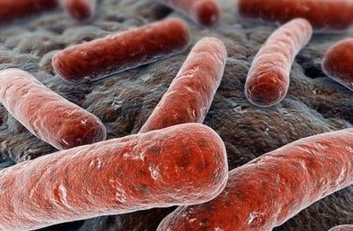 印度发现结核病测试新方法:可节省50%成本