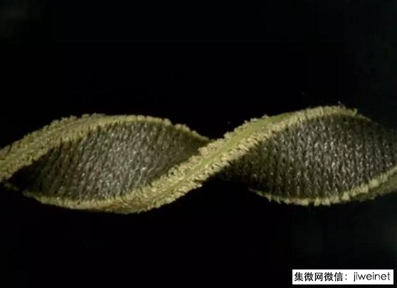 可穿戴产品大突破:柔性电容传感器创新工艺