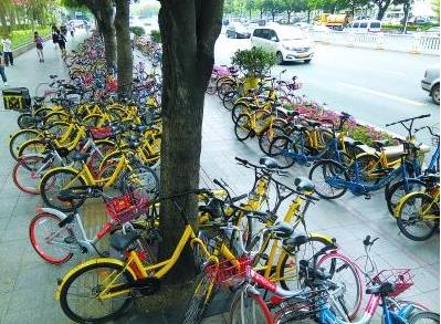 """用物联网与大数据治理""""单车围城"""""""