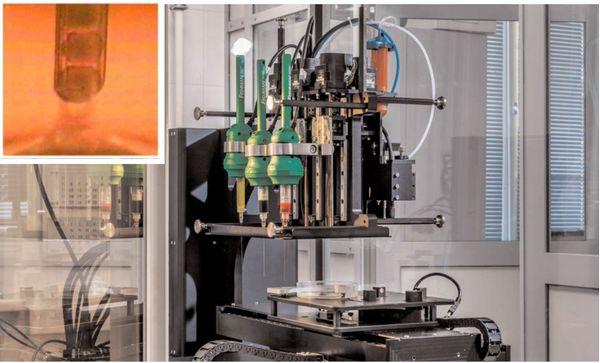 科学家成功3D生物打印功能性的血管化老鼠甲状腺