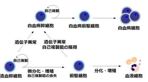 白血病最新研究进展