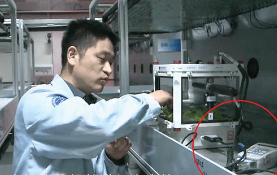 宇航员使用湿敏传感器成功培育太空莴苣