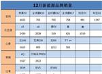 12月新能源车销量品牌TOP5:谁强谁弱