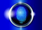 指纹识别火爆 国内指纹芯片厂商正崛起