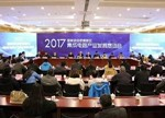 王伟通报合肥高新区集成电路产业发展情况