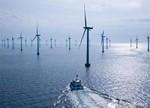 福建兴化湾海上风场首批14台风电机组全部落定