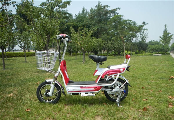 海外市场:中国电动自行车份额较去年增长100%