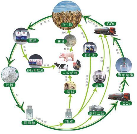 能源局:我国将加强和规范生物质发电管理