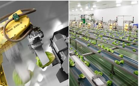 68台机器人代替400个工作职位