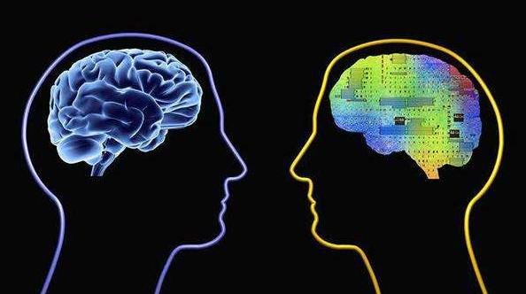 人工智能专用芯片是大势所趋 而IP授权是当前实现商业化的最佳选择