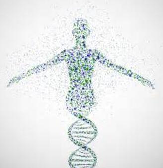 Illumina Ventures首个基因组学投资基金募资2.3亿美元
