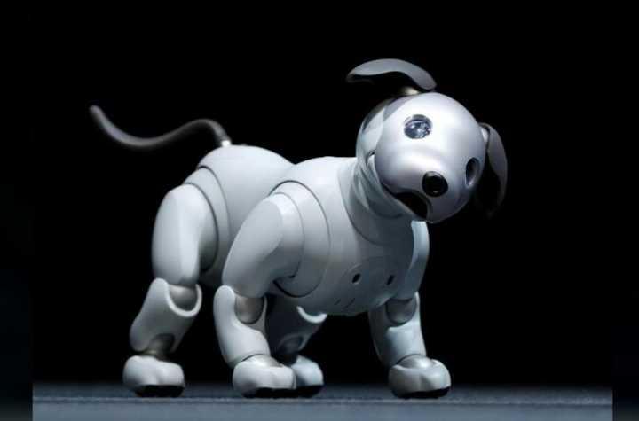 索尼升级爱宝机器狗 欲重振宠物人工智能项目