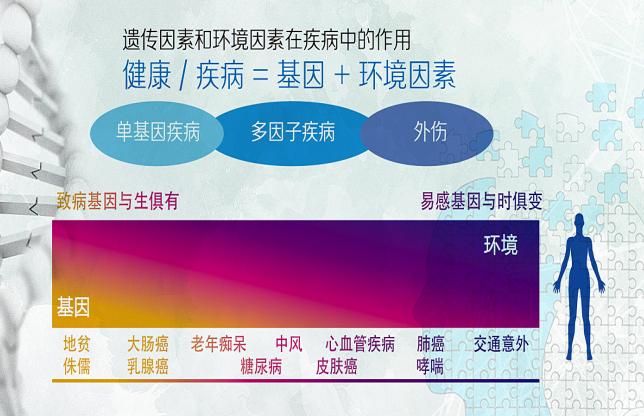 华大基因官鑫:基因+互联网,精准健康从我做起