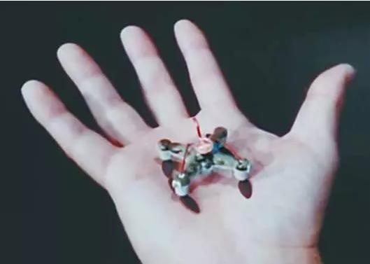 杀人机器人横空出世 小如蜜蜂杀人于无形