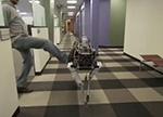 为了训练机器人 你知道过程有多残忍吗?