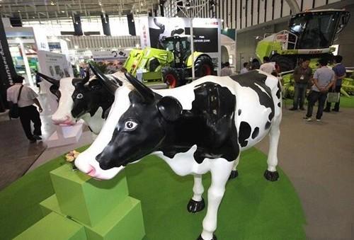 新型微流控和光子技术控制奶牛生育情况