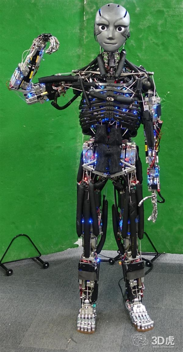 东京大学开发出可以出汗、做俯卧撑的3D打印人形机器人