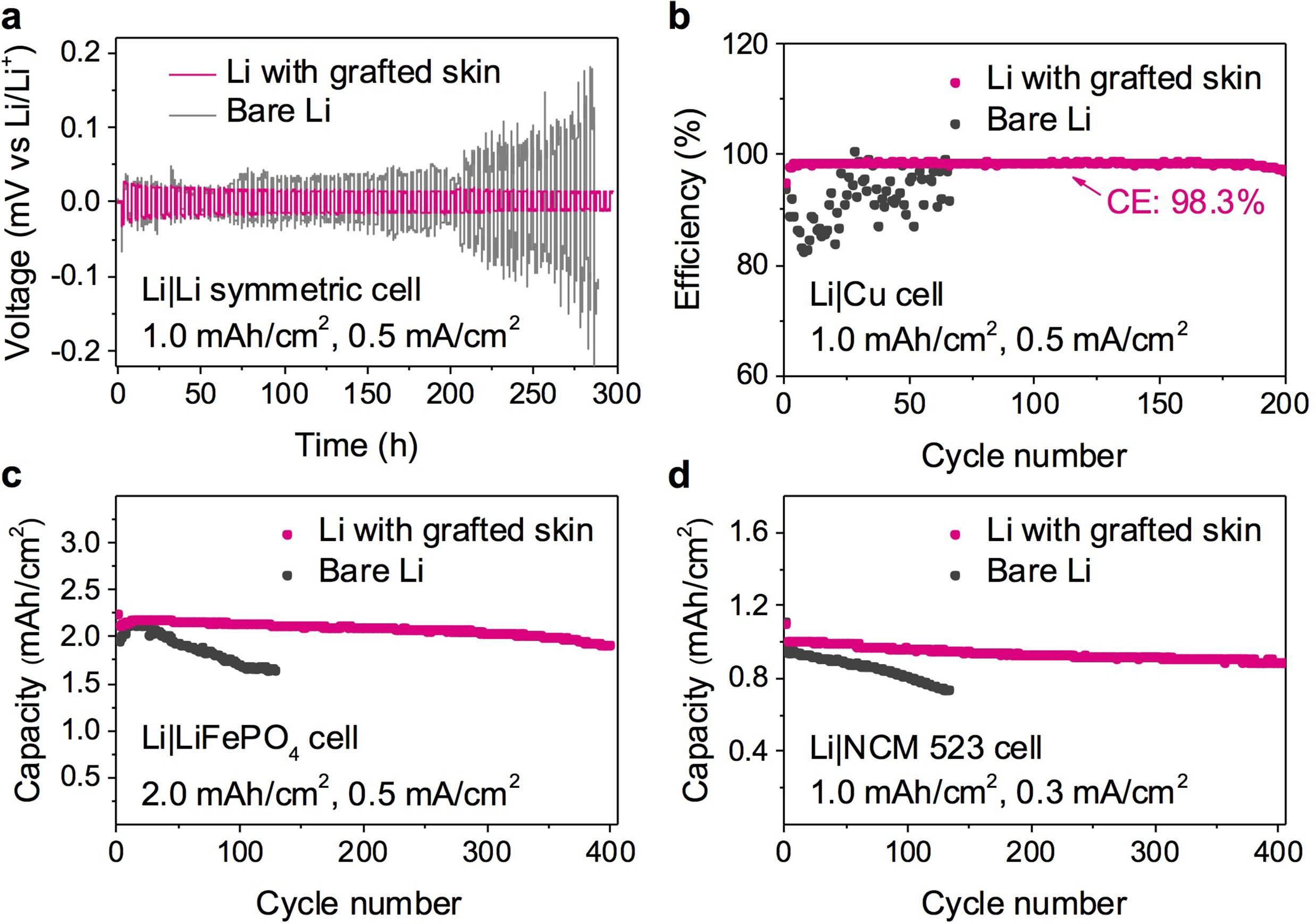 """环醚基高分子保护皮肤用于抑制锂金属负极的""""火爆脾气"""""""