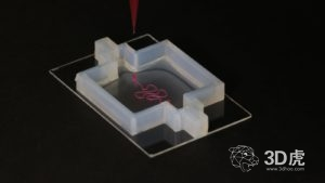 Wyss研究所研究人员借生物3D打印技术研究器官工程