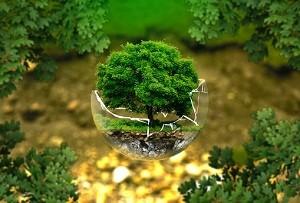 国务院关于环境保护税收入归属问题通知