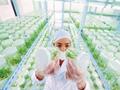 物联网技术对农业供给侧改革的影响