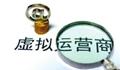 工信部张峰:2016年虚商直接吸引民间投资达31亿元