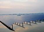 新能源成西部六省区前两大电源
