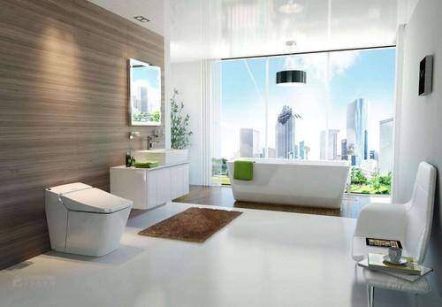 智能卫浴已经进入很多家庭