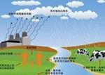 """日本核污染食品在中国""""肆虐""""(有图有视频)"""