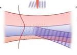 新用途:电子实现对超短激光脉冲的控制