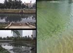 水污染治理PPP项目的挑战及思考