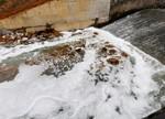 江西十里河突变为牛奶河 水污染覆盖面积严重(图)