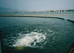 福州水污染综合治理65亿项目陆续开标:谁将成为赢家?