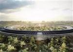 微软合作vs苹果挖人:谁的造车路更长久?