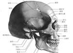 金属3D打印技术可促进颅颌面外科手术创新与发展