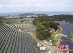 日本滨田MS太阳能发电站竣工
